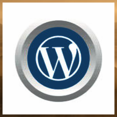 Wordpress символ