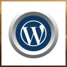 Wordpress символ